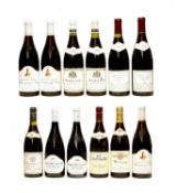 Assorted Red Burgundy