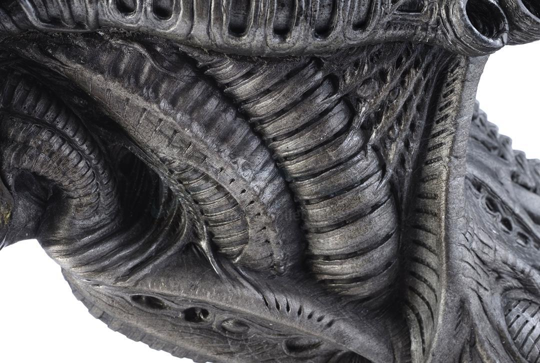 ALIENS VS. PREDATOR: REQUIEM (2007) - Xenomorph Warrior Insert Head with Display Stand - Image 7 of 10