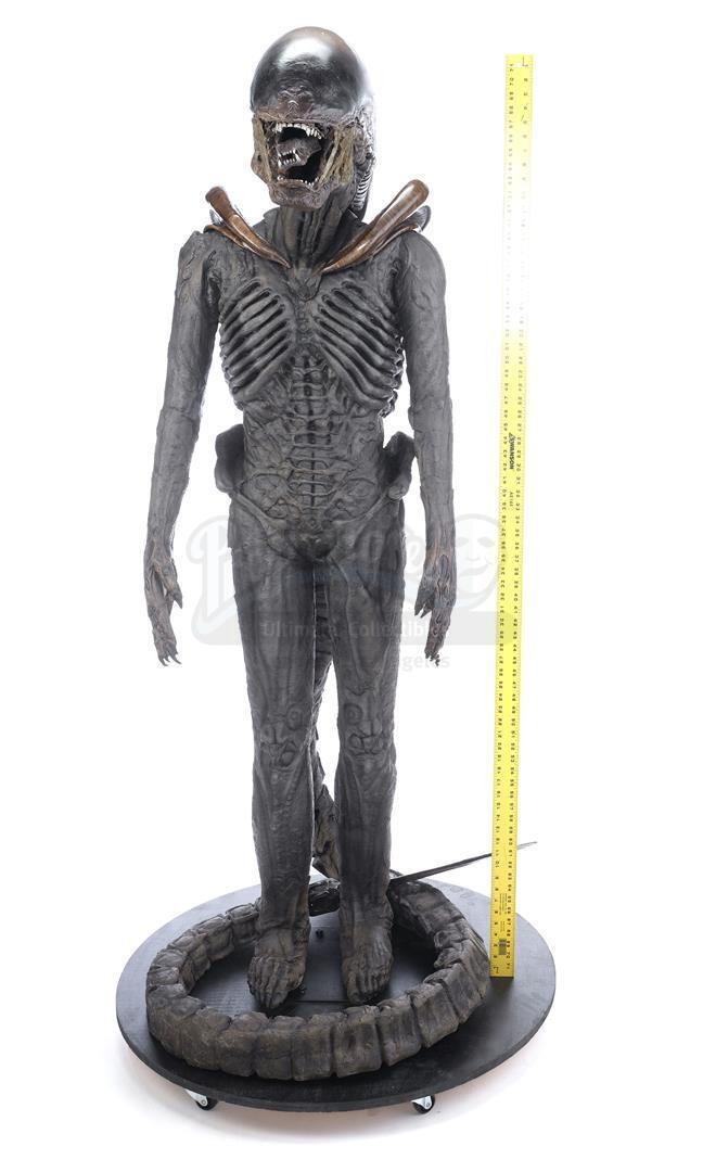 ALIEN3 (1992) - Xenomorph Warrior Complete Costume Display - Image 11 of 11