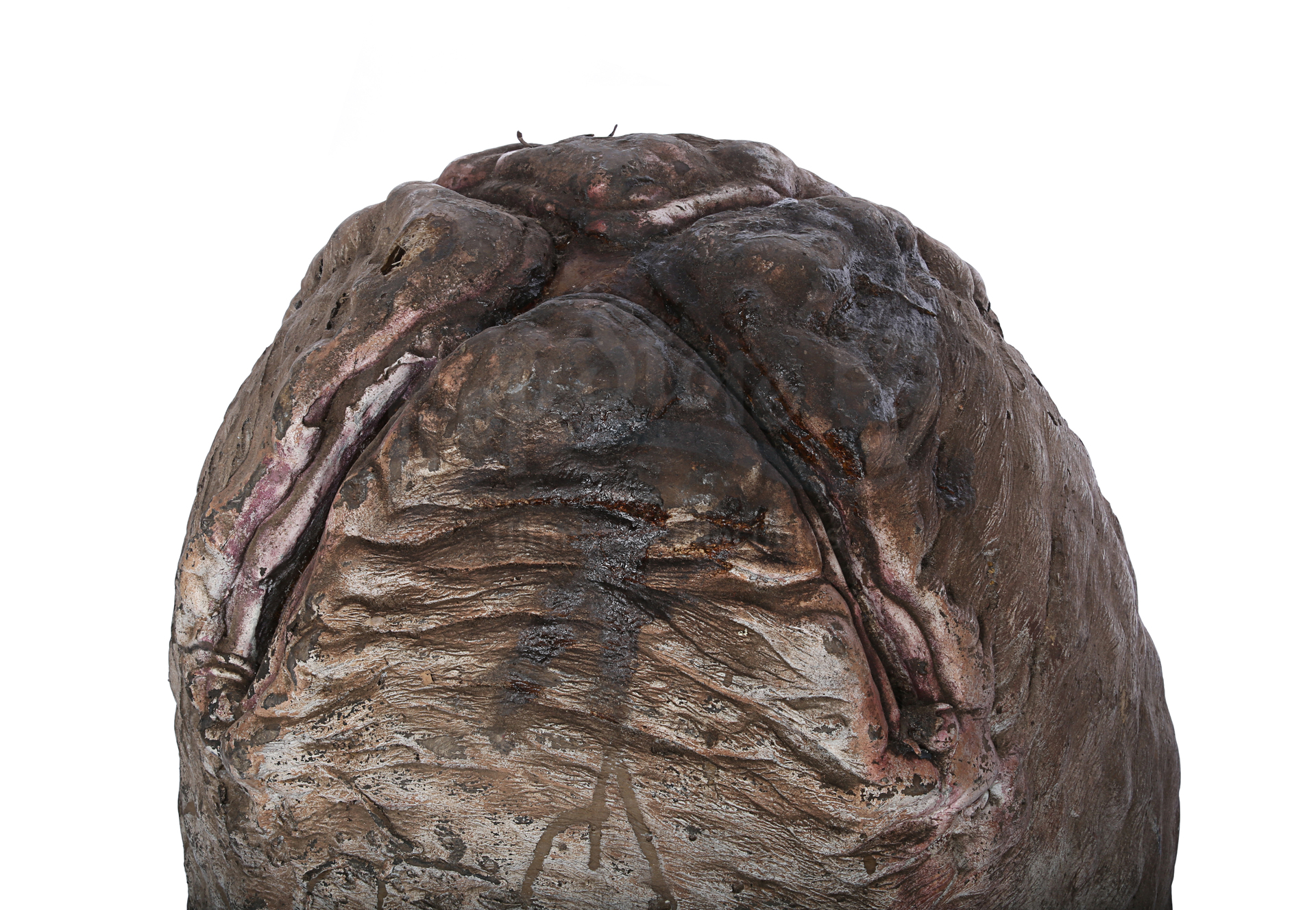 ALIENS (1986) - Xenomorph Egg - Image 7 of 14