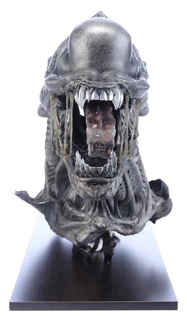 ALIENS VS. PREDATOR: REQUIEM (2007) - Xenomorph Warrior Insert Head with Display Stand - Image 2 of 10