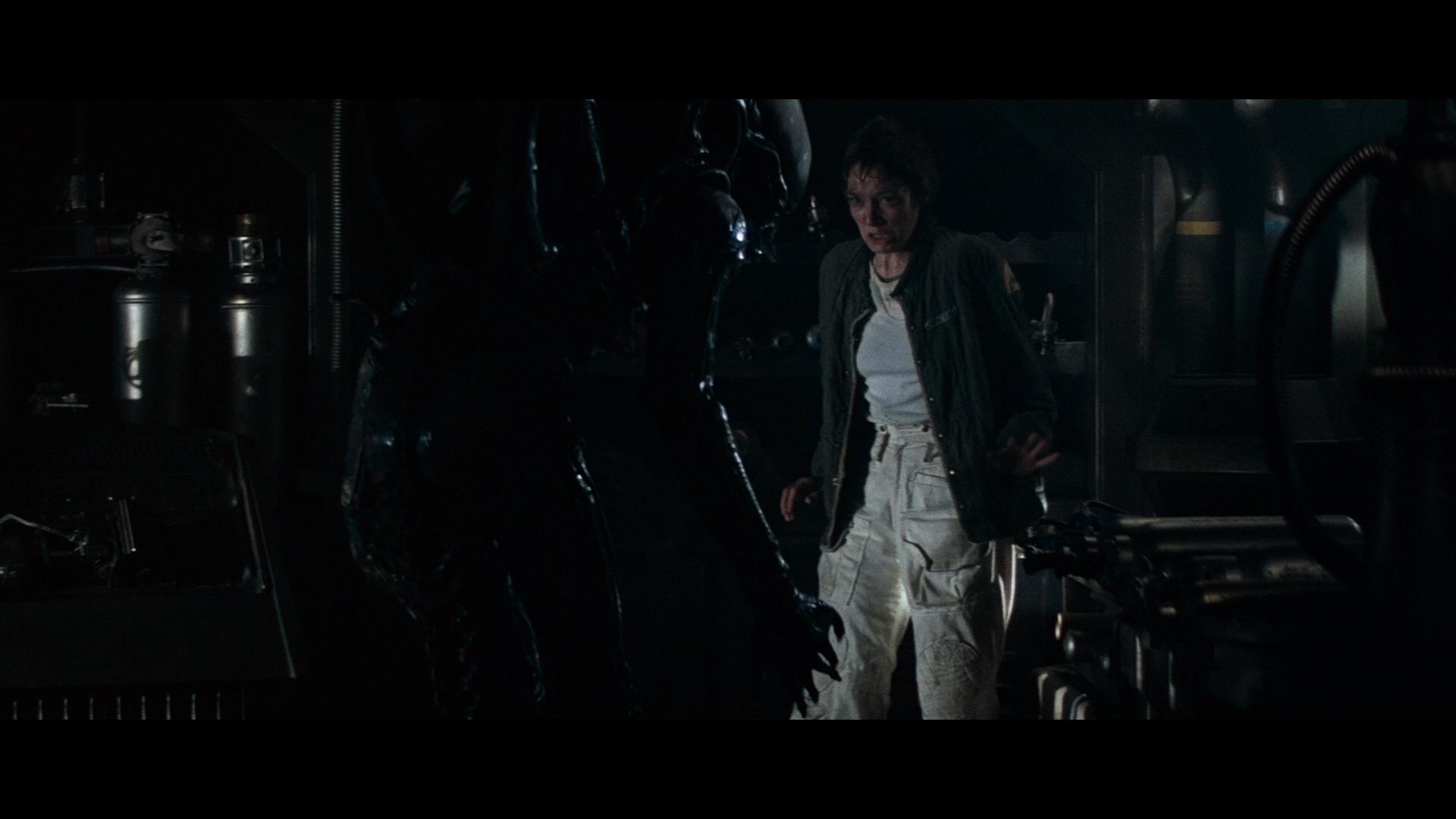 ALIEN (1979) - Nostromo Crew Trousers - Image 8 of 9