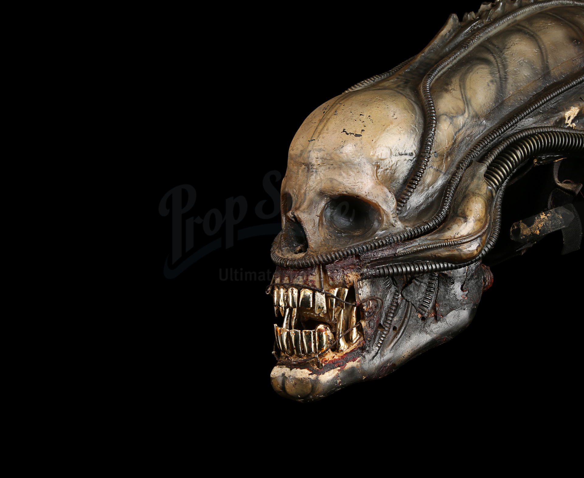 ALIEN (1979) - H.R. Giger-designed Special Effects Mechanical Alien Head - Image 21 of 34