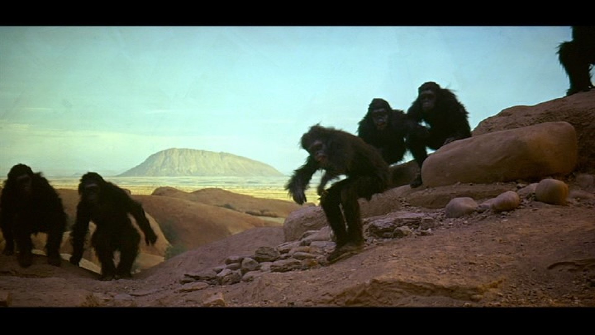 2001: A SPACE ODYSSEY (1968) - Dawn of Man Ape Mask - Image 10 of 12
