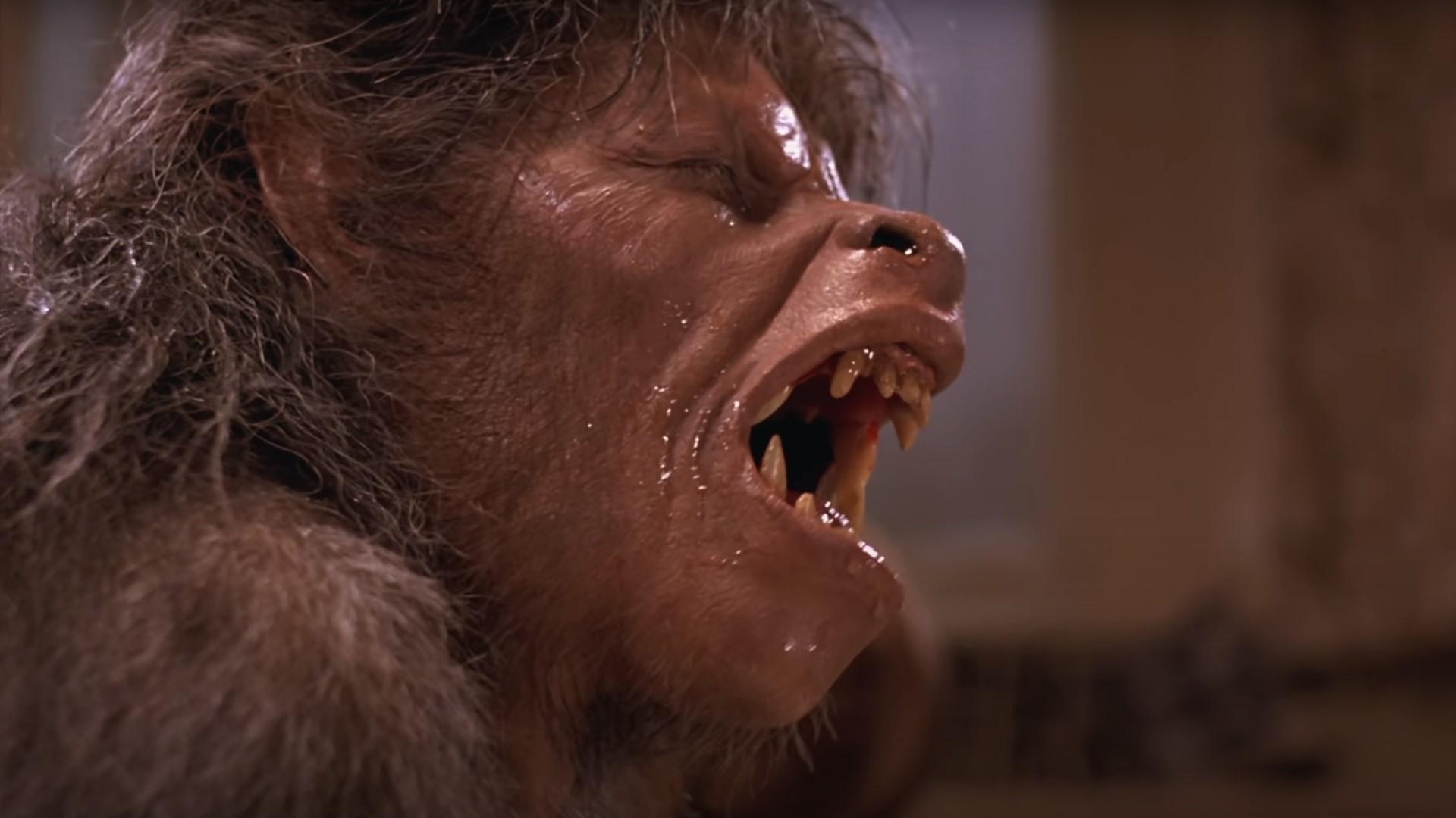 "AN AMERICAN WEREWOLF IN LONDON (1981) - Rick Baker SFX ""Change-O"" Mechanical Werewolf Transformation - Image 23 of 27"