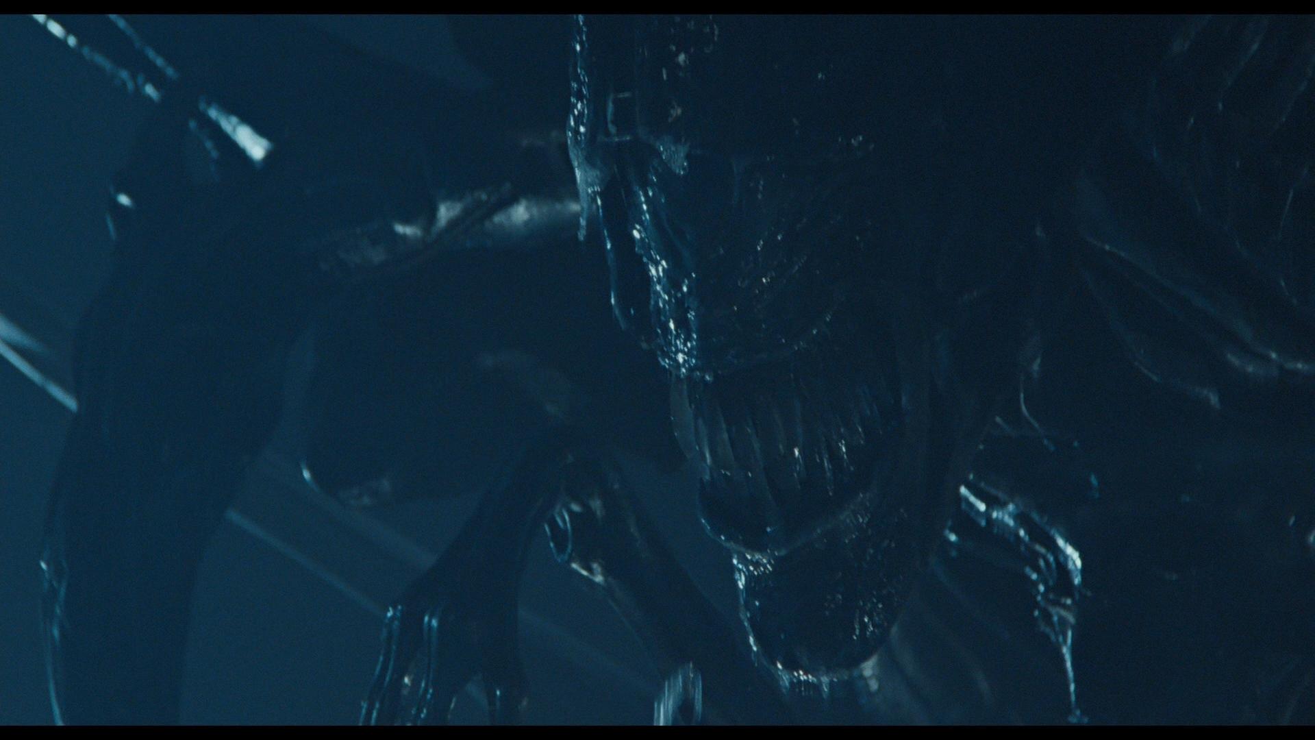 ALIENS (1986) - Full-size Promotional Alien Queen - Image 38 of 38