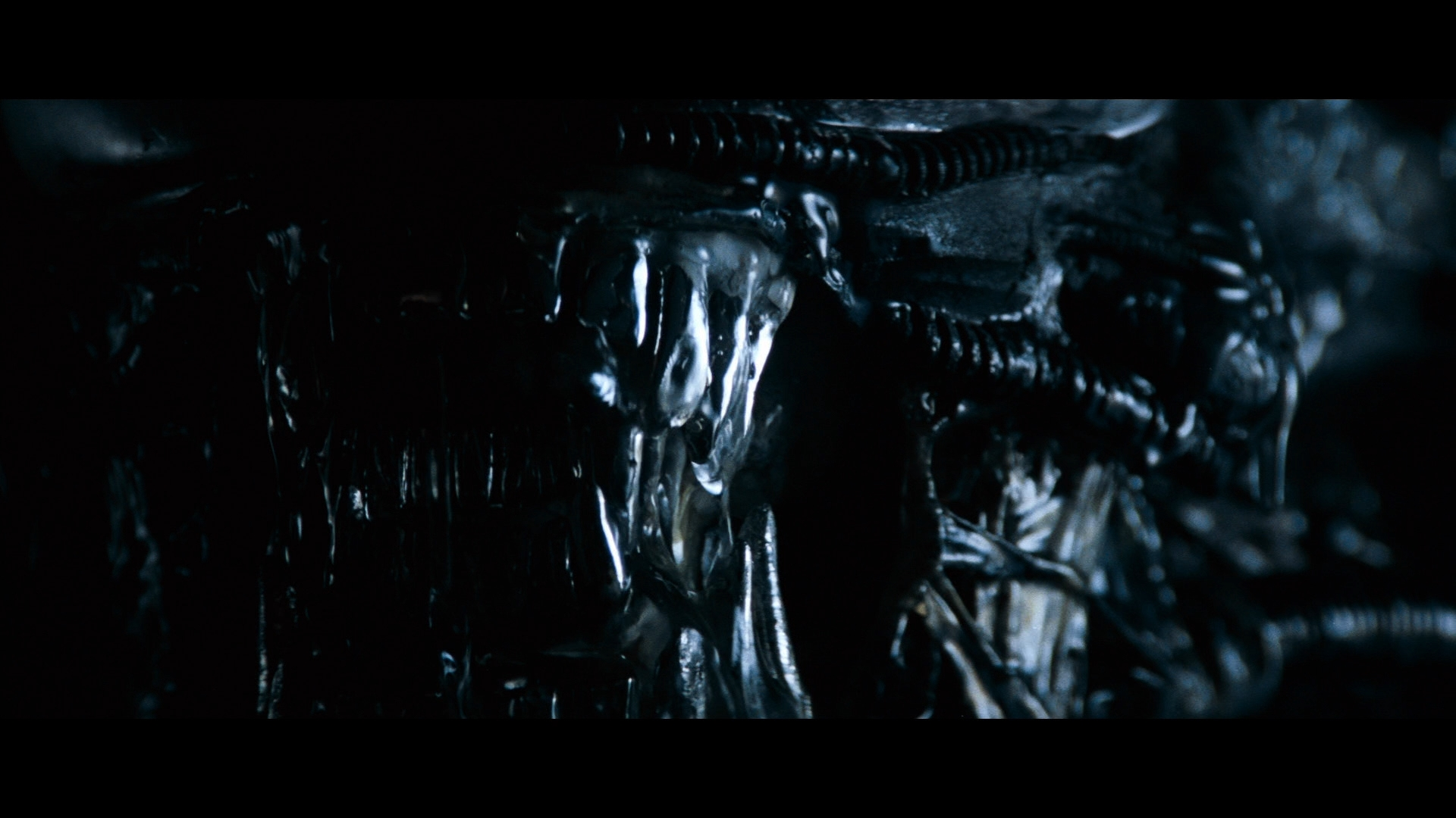 ALIEN (1979) - H.R. Giger-designed Special Effects Mechanical Alien Head - Image 34 of 34