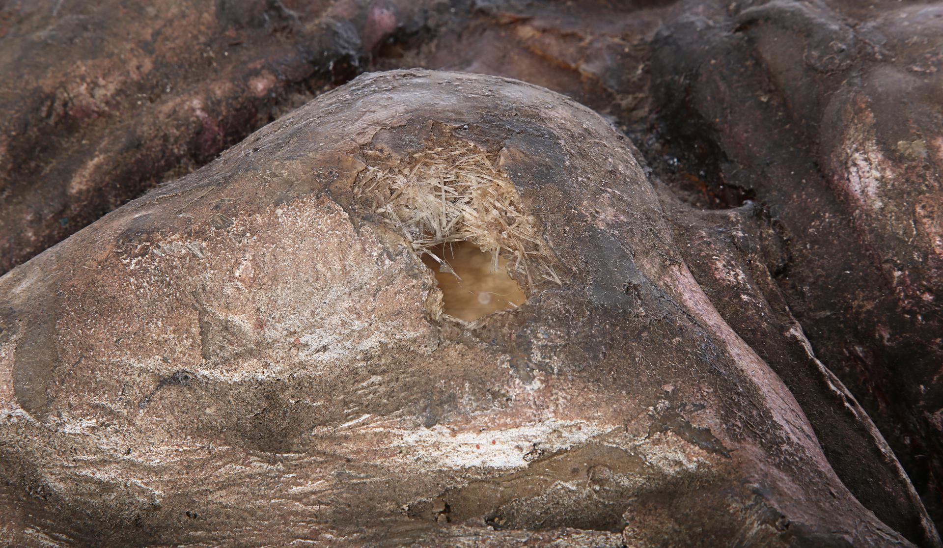 ALIENS (1986) - Xenomorph Egg - Image 4 of 14