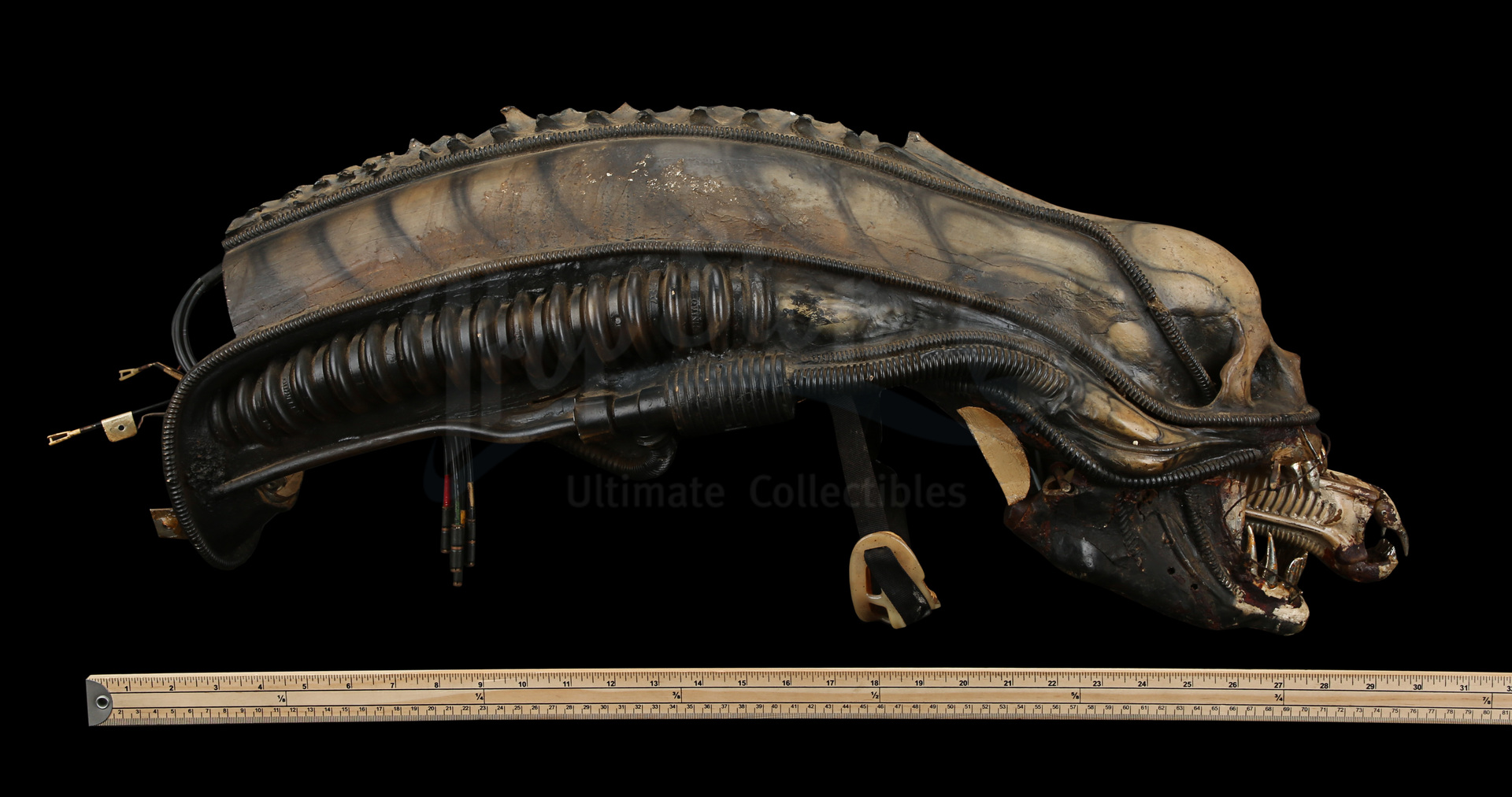 ALIEN (1979) - H.R. Giger-designed Special Effects Mechanical Alien Head - Image 31 of 34