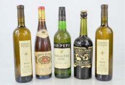 A group of vintage port, wine and sherry to include Clubland white port, Tio Pepe sherry , Domaine