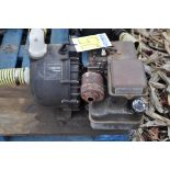 """2"""" transfer pump, Briggs and Straton, Pacer poly pump"""