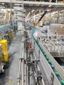 Alliance Slow Down Module with Mass Flow Conveyor