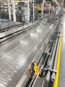 Alliance Mass Flow Conveyor from Slow Down Module to High Cone