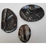 (Curiosa) Natuurstenen objecten met fossielen MesozoÌøcum, 20e eeuw<b