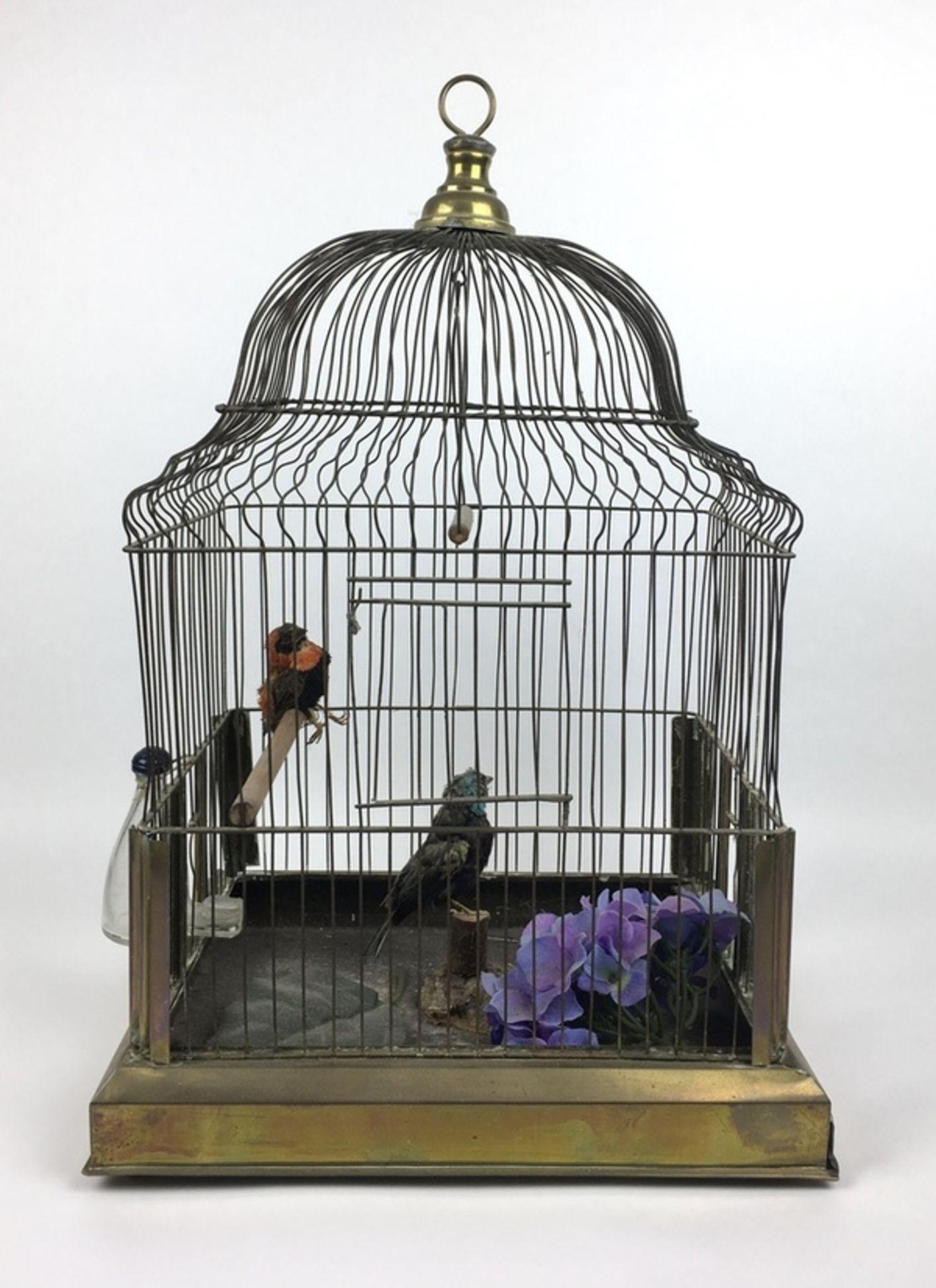 (Antiek) VogelkooiMessing vogelkooi met twee opgezette vogels, eerste helft 20e eeuw. Conditie: - Image 3 of 4