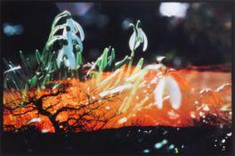 Peter Fischli und David Weiss (Zürich 1952 - lebt in Zürich bzw. 1946 - Zürich - 2012)