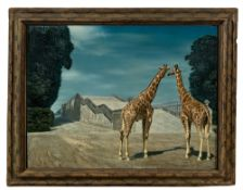 "Albert Carel Willink. ""Twee Giraffen"". 1956"
