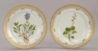 Royal Copenhagen/Dänemark, 2 Porzellanteller/flach (Stücke aus dem berühmten Servie 'Flora Danica'),