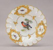 Meissen (Punktzeit), Porzellan-Prunkteller, im Spiegel mit handgemaltem Vogelmotiv ('Dompfaff'),