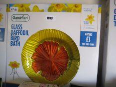 Boxed glass daffodil bird bath