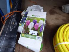 3 bags of bulbs and small pack of bulbs