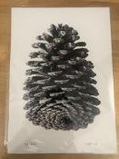 CJP Art A4 Rewild Limited Edition Print