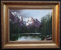 Collectable Framed Art Oil Painting on Board Terry Evans Mountain Landscape
