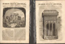 Antique set; Featuring 2 editions of The Dublin Penny Journal published 1882 (#12)