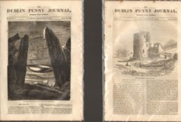 Antique set; Featuring 2 editions of The Dublin Penny Journal published 1882 (#5)