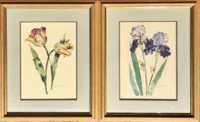 Annabel Fairfax Floral Watercolour Pair