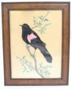 Vintage Blackbird Watercolour with Applied Feathers
