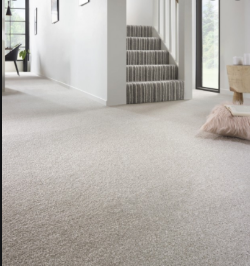 No Reserve Carpet & Flooring direct from Liquidator - Wool Carpets and Cushion Flooring. Large Room Size Rolls