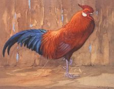 "Limited edition Ralston Gudgeon Print ""Red Rooster"""