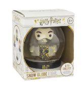 Hagrid Snow Globe