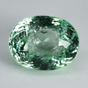 Huge Stone GIA Certified 8.61Cts 100% Natural Green Colour Paraiba Tourmaline