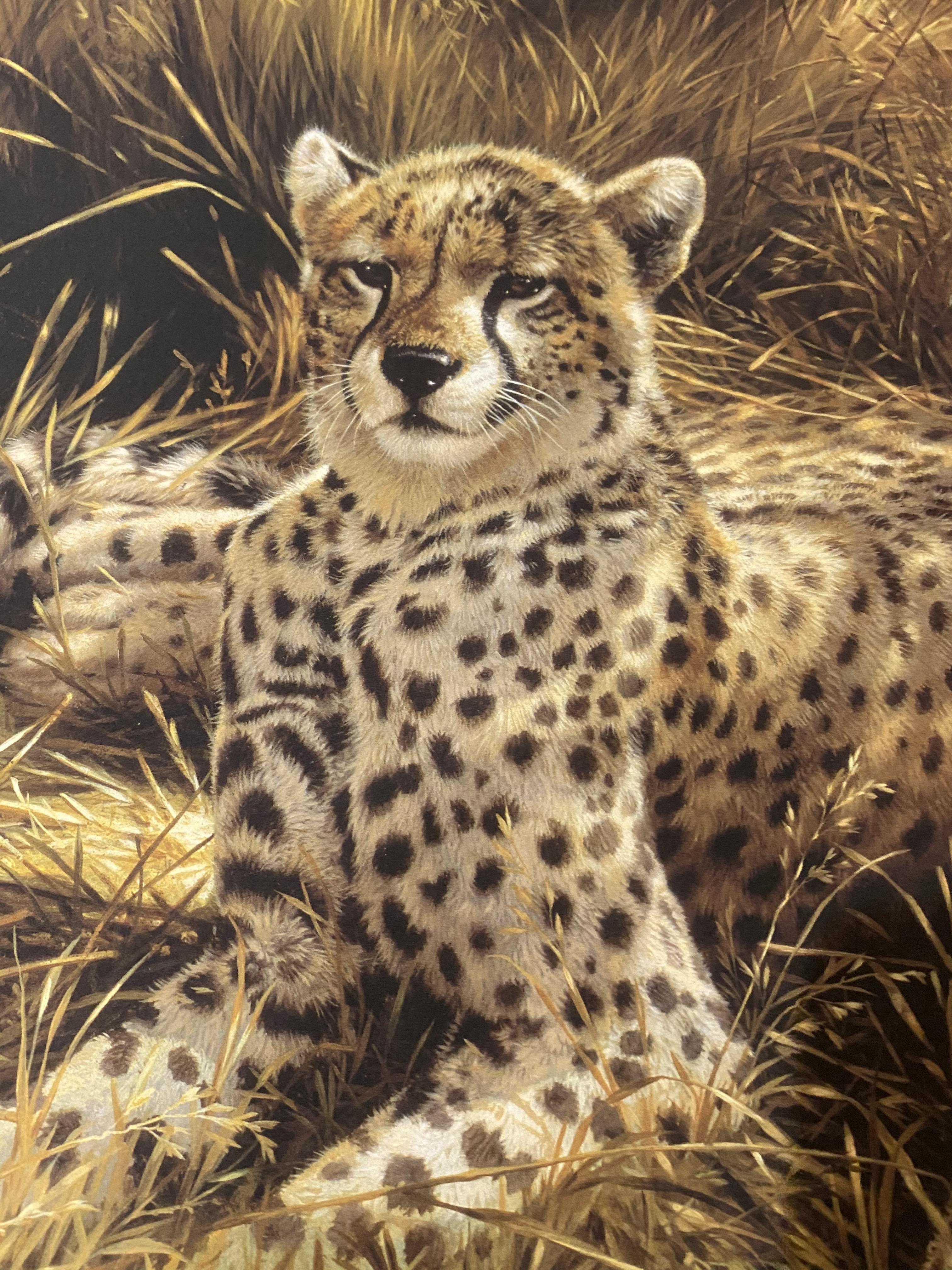 Michael Jackson Signed Limited Edition Print 'Cheetahs' With C.O.A. - Image 5 of 7