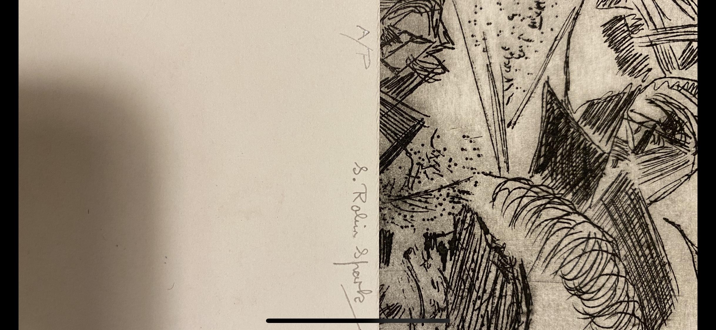 Samuel Robin Spark, Artist Proof `Print 92 - Image 2 of 4