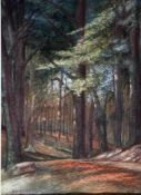 Eicken, El. v., Darßwald, sign. 30 x 22 Mt
