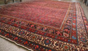 Bidjar (Persien, Iran, ca. 100 Jahre alt), Wolle auf Baumwolle, reine Pflanzenfarben,