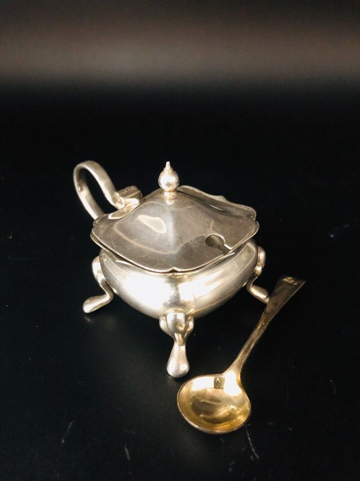 Lot 16 - A Silver Mustard Pot and spoon