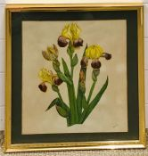 """Nellie D. Speller (act. XX), """"Orchids"""", signed with initials lower right, watercolour, framed and"""