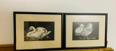 """A pair of Grattage drawings depicting """"Mute Swan"""" and """"Common Gull"""", signed with initials and one"""