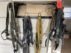 Lot - (7) Safety Harness
