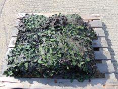 Ex Reserve Unissued Large Original Camouflaged Woodland Netting