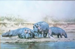 After David Shepherd, HIPPO HEAVEN, print, signed in pencil and dedication verso, framed and