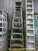 Lot of (2) 9' Ladders
