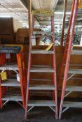 6' Ladder|Lot Tag: 638