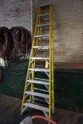10' Werner Fiberglass Ladder|Lot Tag: 429