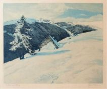 """IWAN, Friedrich (*1889 Landeshut †1967 Wangen) Farbradierung, """"Hütten am Hang"""", links unten"""
