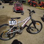 Raliegh 2 wheel bike silver &pink